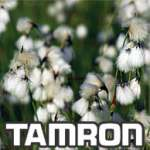Tamron online photo gallery